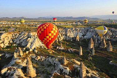 Hot air balloons over volcanic landscape, Cappadocia, Turkey