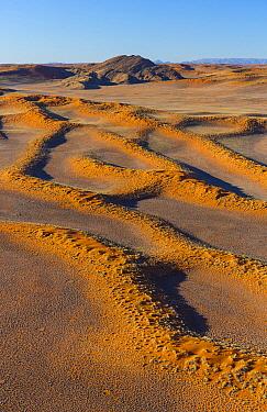 Sand dunes, Namib Desert, Namib-Naukluft National Park, Namibia