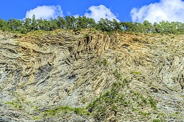 Sedimentary deposit of folded flysch, Alps, France