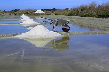 Salt harvesting, Noirmoutier Island, Vendee, France