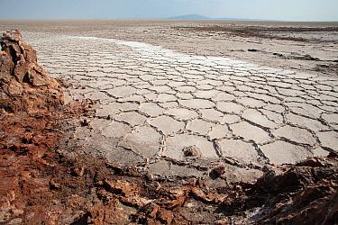 Salt formations in saltwater lake, Dallol Volcano, Ethiopia
