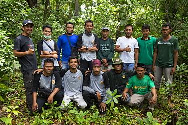 Sumatran Orangutan (Pongo abelii) conflict response unit members, Sumatra, Indonesia