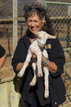 Cheetah (Acinonyx jubatus) conservationist, Laurie Marker, holding Domestic Goat (Capra hircus) baby that is part of community conservation program, Cheetah Conservation Fund, Namibia