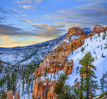 Hoodoos in winter, Bryce Canyon National Park, Utah