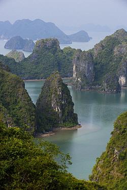 Karst formations, Ha Long Bay, Cat Ba Island, Vietnam