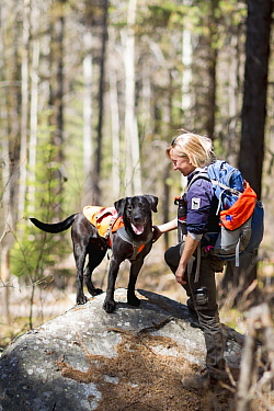 Domestic Dog (Canis familiaris) named Sampson, a scent detection dog with Conservation Canines, and field technician Julianne Ubigau, northeast Washington