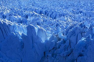 Ice ridges, Perito Moreno Glacier, Los Glaciares National Park, Andes, Patagonia, Argentina