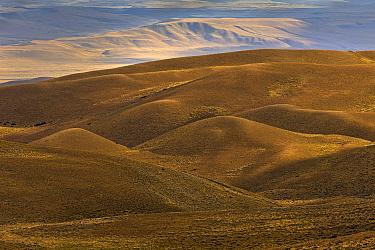 Patagonian steppe near El Calafate, Patagonia, Argentina