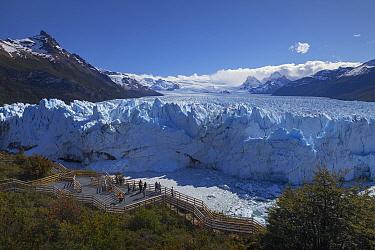 Terminal moraine, Perito Moreno Glacier, Los Glaciares National Park, Andes, Patagonia, Argentina