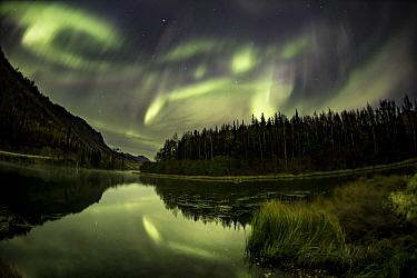 Northern lights above lake, Glen Highway, Alaska