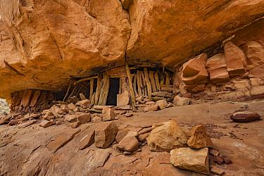 Log house ruin, Slickhorn Canyon, Cedar Mesa, Bears Ears National Monument, Utah