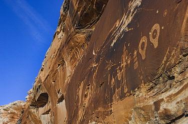 Petroglyphs made by Ancestral Puebloans with bullet holes, Wolfman Panel, Comb Ridge, Cedar Mesa, Bears Ears National Monument, Utah