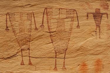 Petroglyphs made by Ancestral Puebloans, Birthing Panel, Grand Gulch, Cedar Mesa, Bears Ears National Monument, Utah