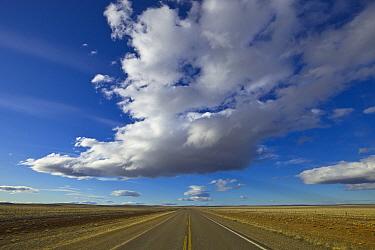 Cumulus clouds above road in spring, Patagonia, Argentina