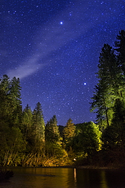 Stars over coniferous forest and river, Russian River, California