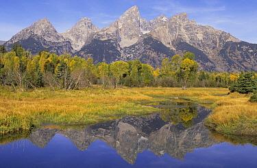 Grand Teton Range at Schwabacher Landing, Grand Teton National Park, Wyoming