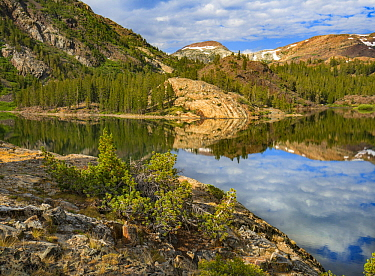 Dana Plateau from Ellery Lake, Sierra Nevada, Inyo National Forest, California