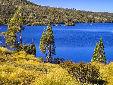 Lake Windermere, Cradle Mountain, Tasmania, Australia