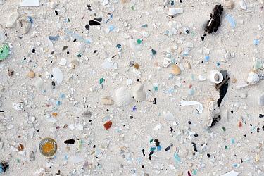 Beach with plastic marine debris, Midway Atoll, Hawaiian Leeward Islands, Hawaii