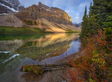 Crowfoot Mountains and Bow Lake, Icefields Parkway, Rocky Mountains, Alberta, Canada