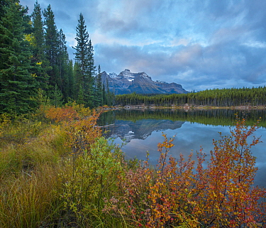 Bow Range at Herbert Lake, Rocky Mountains, Banff National Park, Alberta, Canada