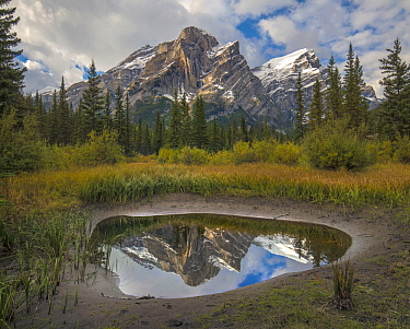 Peak reflected in pond, Mount Kidd, Kananaskis Country, Alberta, Canada