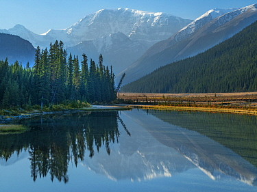 Mount Kitchener reflected in Athabasca River, Icefields Parkway, Alberta, Canada