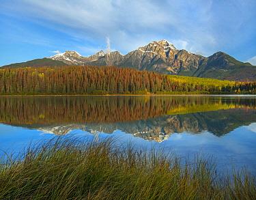 Pyramid Mountain from Cottonwood Slough, Jasper National Park, Alberta, Canada