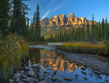 Castle Mountain reflected in Athabasca River, Banff National Park, Alberta, Canada