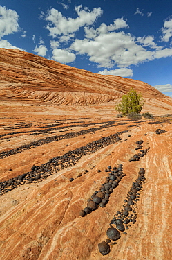 Moqui marble rock formations, Grand Staircase-Escalante National Monument, Utah