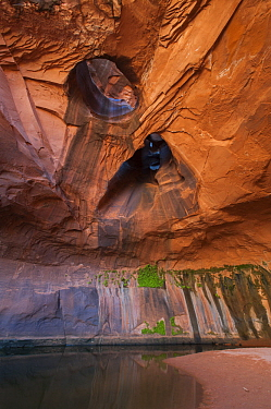 Hole in rock cliff, Golden Cathedral in Neon Canyon, Grand Staircase-Escalante National Monument, Utah