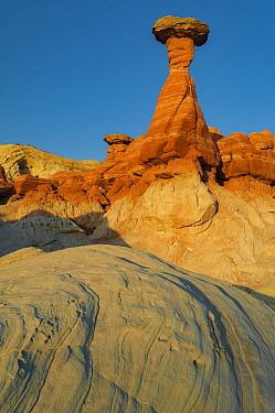 Hoodoos, Toadstool Caprock, near Paria River, Grand Staircase-Escalante National Monument, Utah