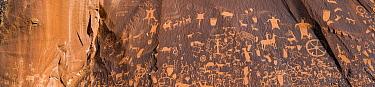 Petroglyphs, Newspaper Rock State Park, Utah