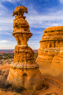 Rock pinnacle, Coyote Buttes, Vermilion Cliffs National Monument, Arizona