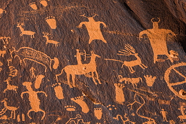 Newspaper Rock, a petroglyph panel of predominantly Ute images, Bears Ears National Monument, Utah