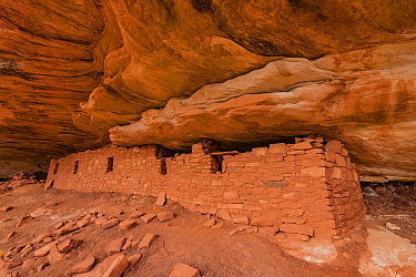 Moon House ruins, Grand Gulch, Bears Ears National Monument, Utah