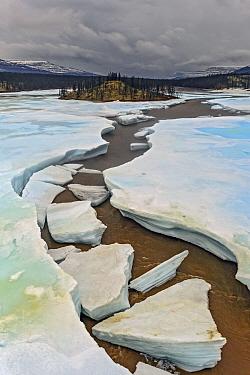 Large ice chunks in river, Putoransky State Nature Reserve, Putorana Plateau, Siberia, Russia