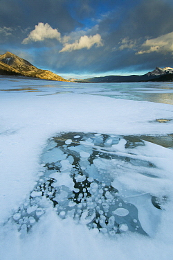 Frozen methane bubbles in winter, Abraham Lake, Canadian Rocky Mountains, Alberta, Canada