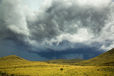 Lightning over savanna, Mountain Zebra National Park, South Africa