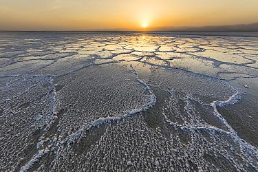 Salt flat, Lake Asale, Danakil Depression, Ethiopia