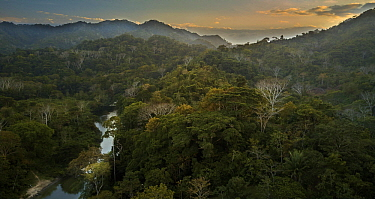 Forest-covered hills and river, Taironaka Lodge, Colombia