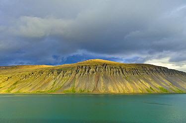 Coastline with basalt columns, Westfjords, Iceland