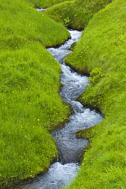 Stream in spring meadow, Haganesvik, Iceland