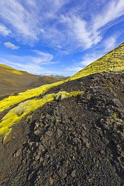 Volcanic hillsides, Laki Craters, Iceland