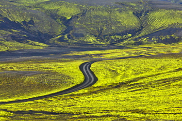Tundra and gravel road, Tungnarfjoll Mountains and Fogrufjoll Mountains, Iceland