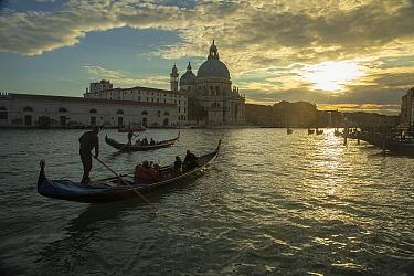 Gondolas on canal, Venice, Italy