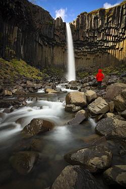 Hiker near waterfall and basalt columns, Svartifoss Waterfall, Skaftafell National Park, Iceland