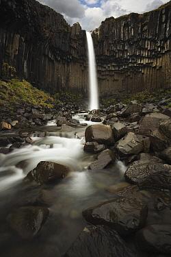 Waterfall and basalt columns, Svartifoss Waterfall, Skaftafell National Park, Iceland