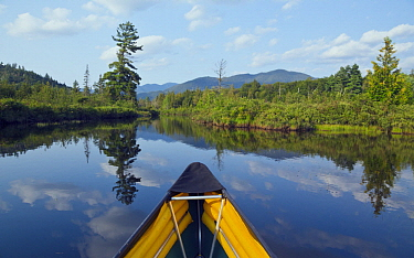 Canoe on river in summer, Hudson River, Hudson Gorge Wilderness, New York