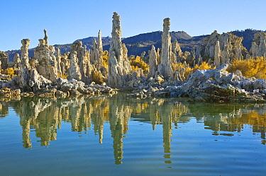 Calcium tufa formations, Mono Lake, California